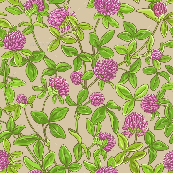 Clover Vector Pattern - Flowers & Plants Nature