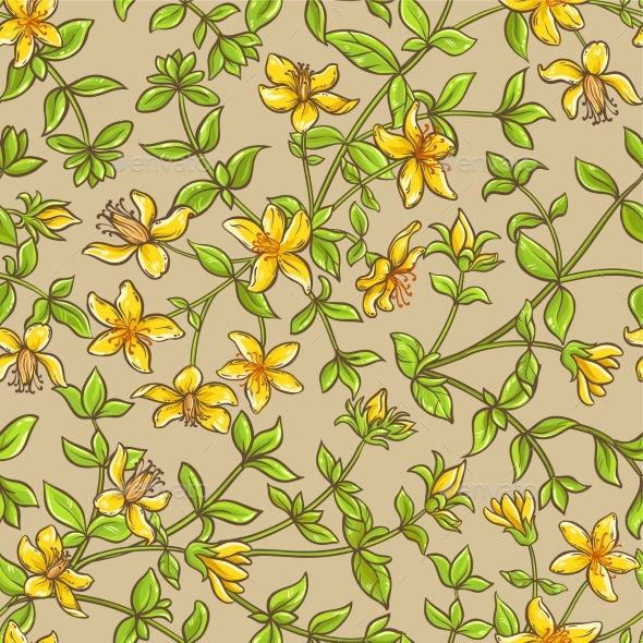 Tutsan Vector Pattern - Flowers & Plants Nature
