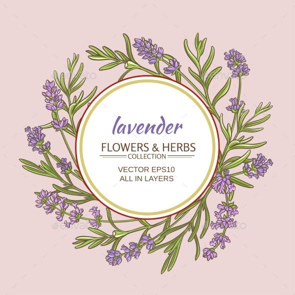 Lavender Vector  Frame - Health/Medicine Conceptual