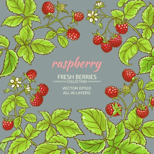 Raspberry Vector Frame - Food Objects