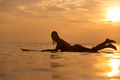 Surfer girl in ocean at sunset time - PhotoDune Item for Sale