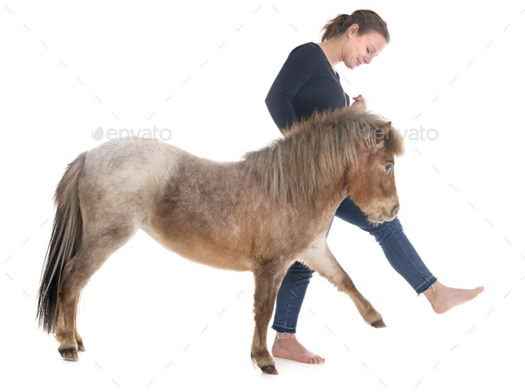 Falabella miniature horse and girl - Stock Photo - Images