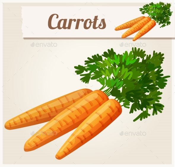 Carrots - Food Objects