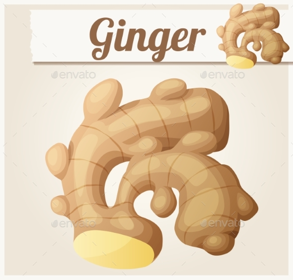 Ginger Vector Cartoon Icon - Food Objects