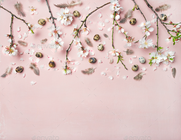 Easter background with eggs, almond flowers and feathers - Stock Photo - Images