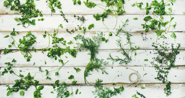 Various fresh green kitchen herbs for healthy cooking, wide composition - Stock Photo - Images