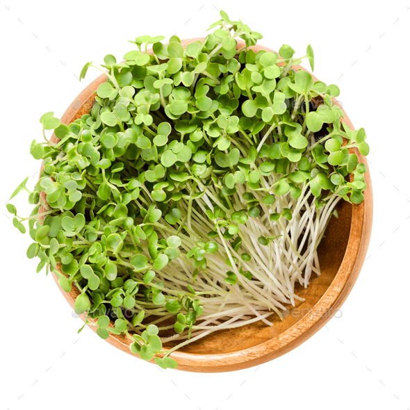 White mustard microgreen in wooden bowl over white - Stock Photo - Images