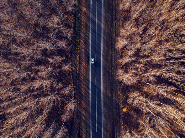 Aerial view of car on the road through autumn forest - Stock Photo - Images