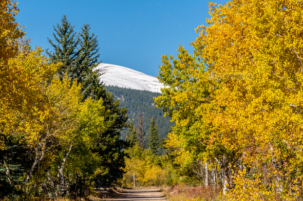 Unpaved road at autumn sunny day - Stock Photo - Images
