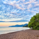 Willow on shore of Lake Baikal - PhotoDune Item for Sale