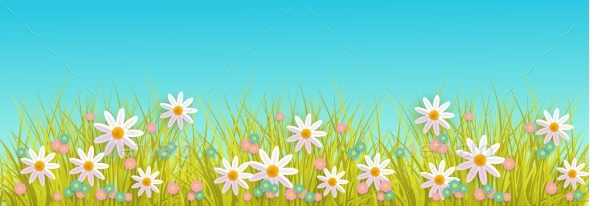 Spring Grass and Flowers Border on Blue Sky - Flowers & Plants Nature
