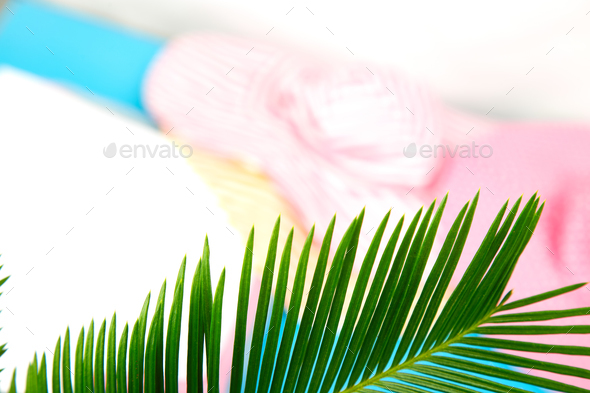 Summer outfit blurred. tropical palm leave - Stock Photo - Images