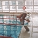 Jump Into the Water in the Pool. The Swimmer Dives and Swims Under the Water. The Camera Flies Over - VideoHive Item for Sale