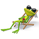 Frog in a Deckchair with Alpha Channel - VideoHive Item for Sale