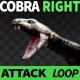 Cobra Right View Attack - VideoHive Item for Sale