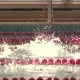 Girl Swimmer Swimming in Butterfly Style in the Pool. . - VideoHive Item for Sale