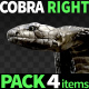 Cobra Right View Pack 4 - VideoHive Item for Sale