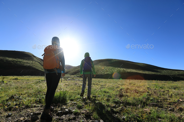 Two friends hiking in high altitude mountains - Stock Photo - Images