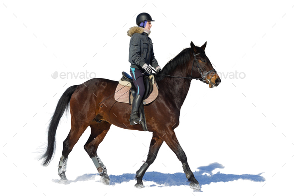 Horseback riding. A woman rides a horse. Training. Hippodrome. Sunny day - Stock Photo - Images