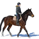 Horseback riding. A woman rides a horse. Training. Hippodrome. Sunny day - PhotoDune Item for Sale