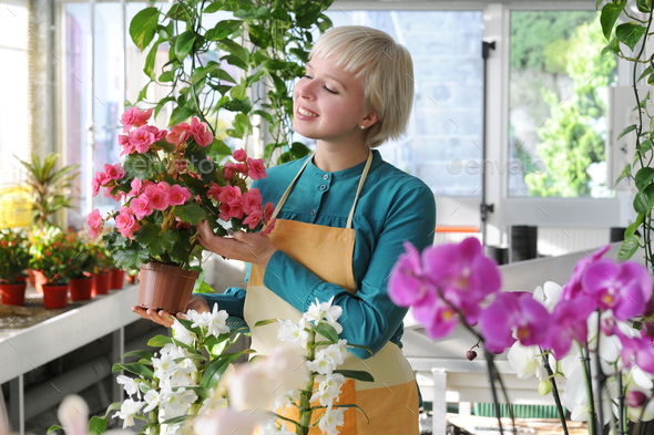 portrait of cheerful florist - Stock Photo - Images