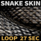 Snake Skin - VideoHive Item for Sale