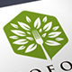 Green Fork Tree Logo - GraphicRiver Item for Sale