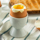 Homemade Soft Boiled Egg in a Cup - PhotoDune Item for Sale