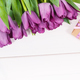 Bouquet of purple tulips and gift for different occasions or celebration on boards - PhotoDune Item for Sale