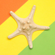Bright minimal summer design with starfish - PhotoDune Item for Sale