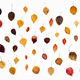 collage from various fallen autumn leaves on white - PhotoDune Item for Sale