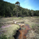 Long Exposure Spring Water Timelapse - VideoHive Item for Sale