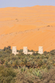 Arabian Fort in an Oasis - PhotoDune Item for Sale