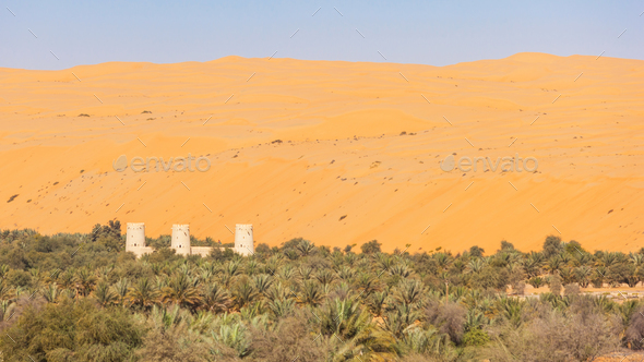 Arabian Fort in an Oasis - Stock Photo - Images