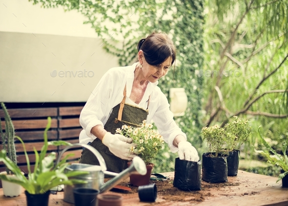 People is planting flowers - Stock Photo - Images