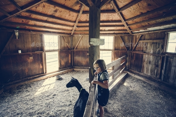 Little girl playing with a goat - Stock Photo - Images