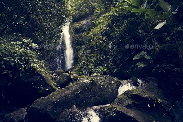 Beautiful view of a waterfall - Stock Photo - Images