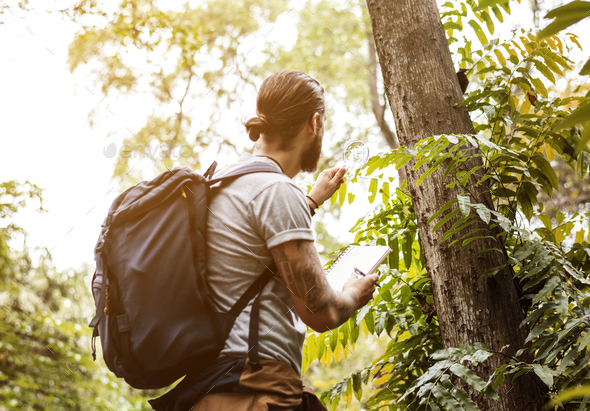 Biologist in a forest - Stock Photo - Images