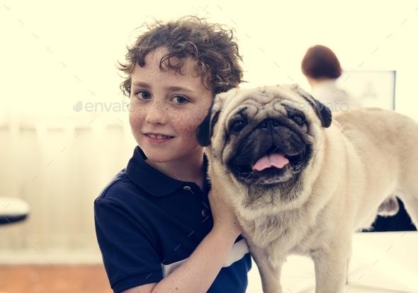 Dog at pet hospital - Stock Photo - Images