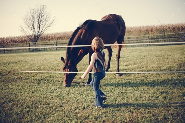 Little girl playing with a horse - Stock Photo - Images