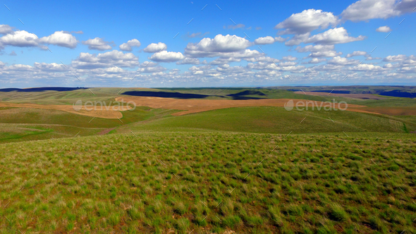 Rolling Green Hills Agricultural Land Partly Cloudy Blue Sky - Stock Photo - Images