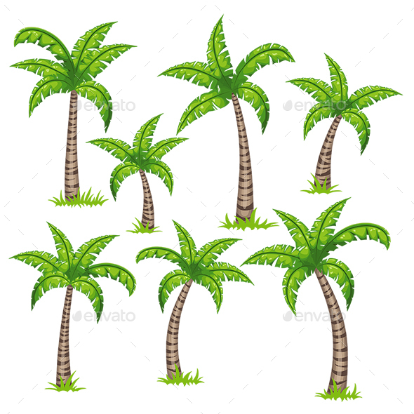 Set of Different Tropical Palm Trees - Flowers & Plants Nature