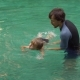 Man Swimming Instructor Teaches Little Boy Swimming in the Pool - VideoHive Item for Sale