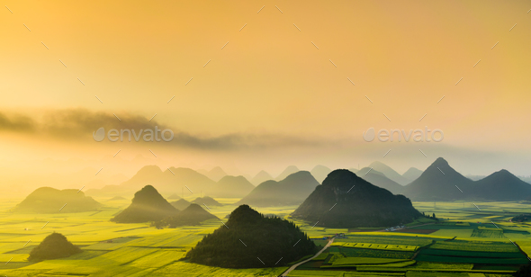 Yellow rapeseed (canola) flower field in spring, Luoping, China - Stock Photo - Images