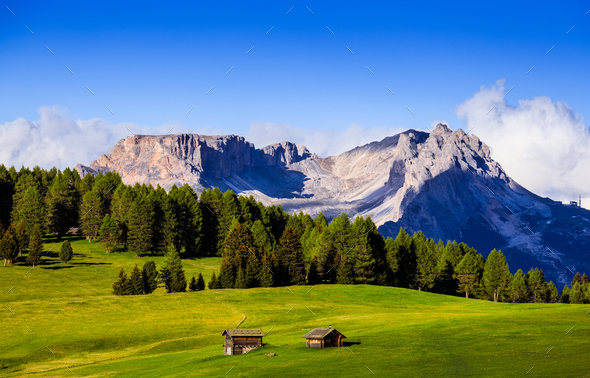 Mt.Langkofel at sunset, view from Seiser Alm, Dolomites, Italy - Stock Photo - Images