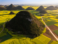 Yellow rapeseed (canola) flower field in spring, Luoping, China - PhotoDune Item for Sale