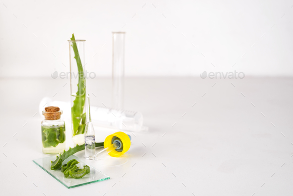 Aloe vera oil in glass bottle with sliced of aloe vera gel - Stock Photo - Images