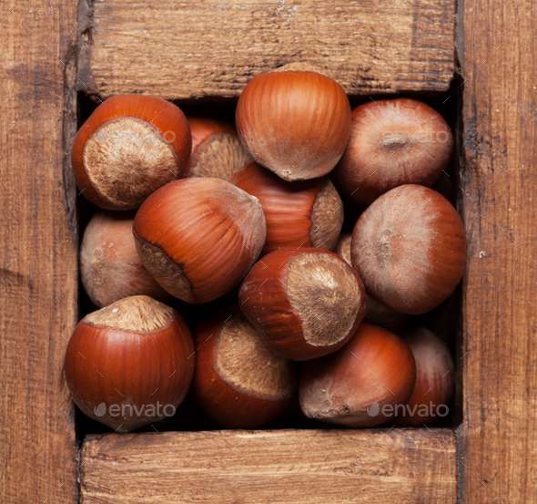 Chestnut nuts - Stock Photo - Images