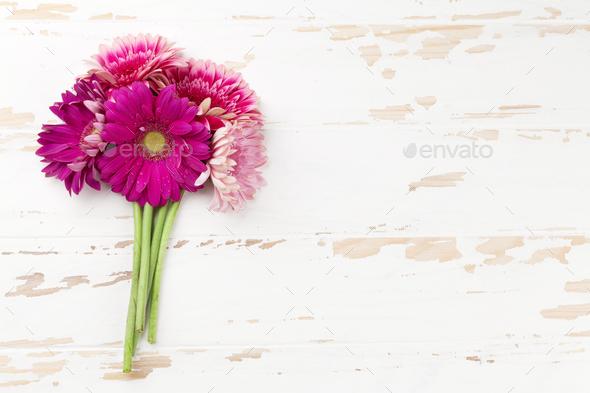 Gerbera flowers - Stock Photo - Images
