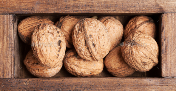Walnut nuts - Stock Photo - Images